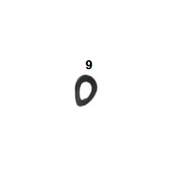 Arandela ondulada 6